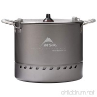 MSR 4.5L WindBurnerAr Stock Pot - B078KN16W7