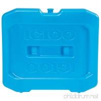 Igloo MaxCold Ice Extra Large Freezer Block Blue 12 Large x 1.75 W x 10.5 H - B01N7UIYGA