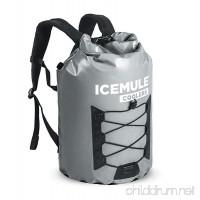 IceMule Coolers Pro Coolers  Grey  Large/20-Liter - B00IYJ7NR2