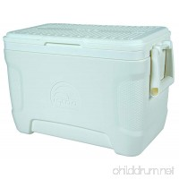 Igloo Marine Contour Cooler 25 quart 23 L White - B01NAM1TNA